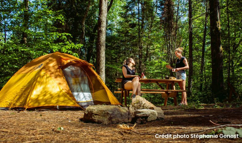 camping chalets launaudiere