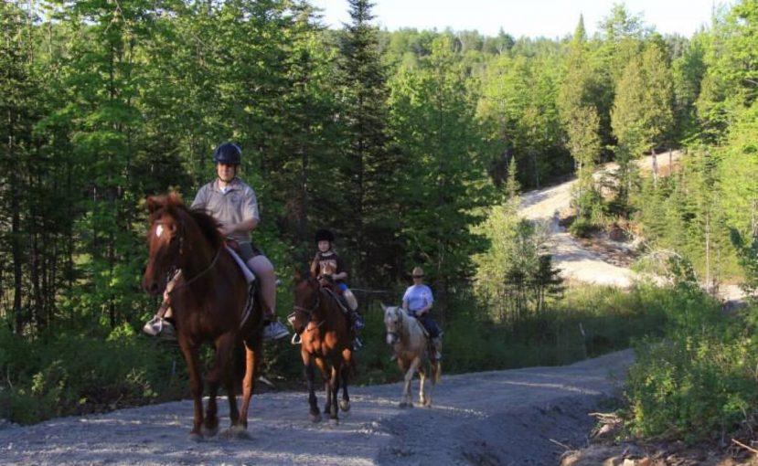 Chalets Lanaudière offre un forfait d'équitation